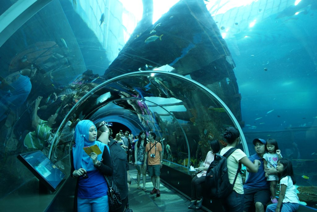 marine parks Marine parks (also referred to as marine protected areas and marine reserves) are special places, underwater parks that are managed primarily for the conservation of their ecosystems, habitats and the marine life they support.
